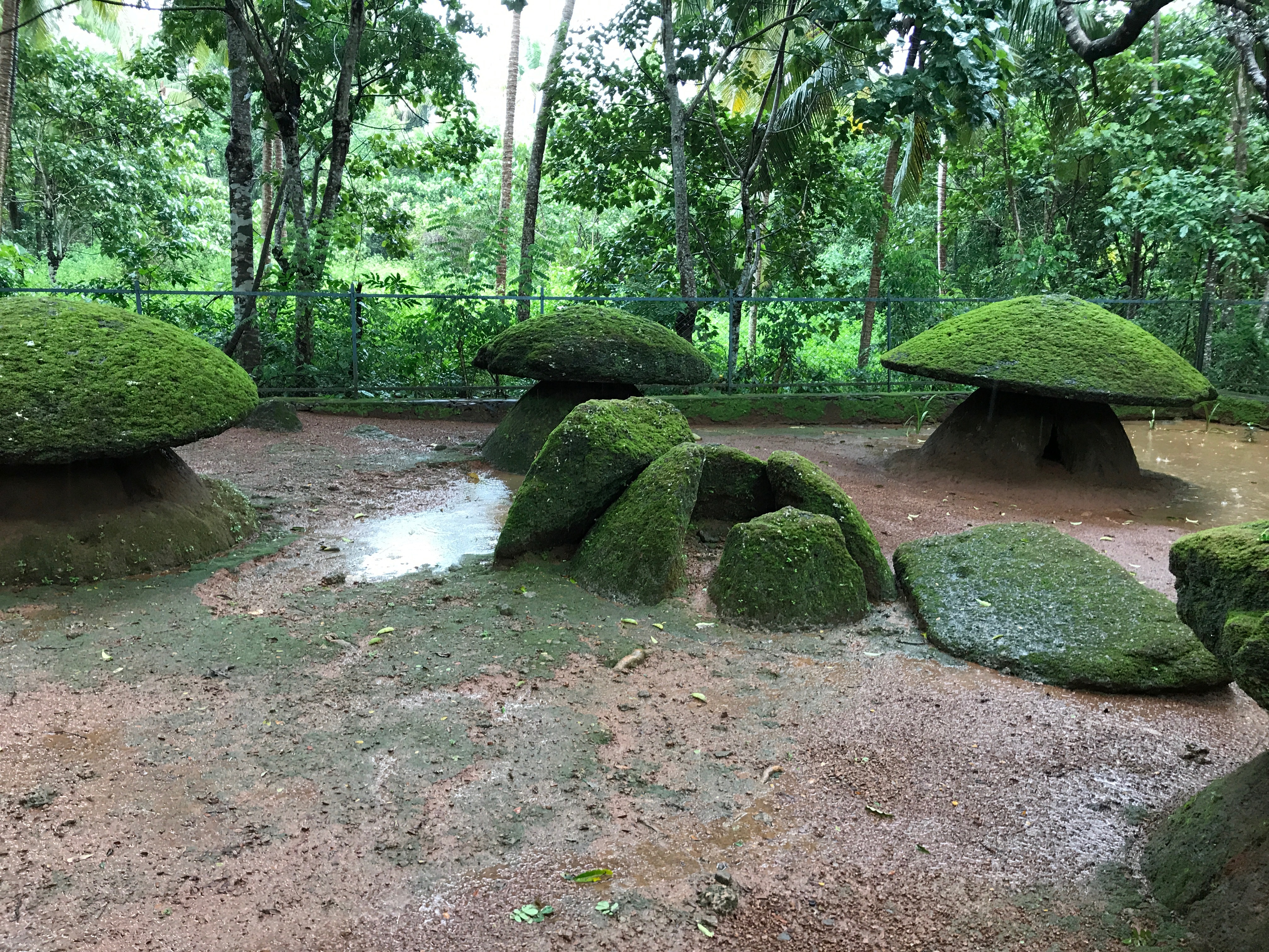 Kerala Society and Culture: Ancient and Medieval