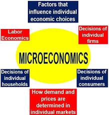 MICRO ECONOMICS I , ECO1 B01